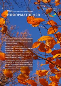newsletter-28_page_01
